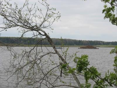 По Северной Двине ползают лесовозы, птички поют, мы отдыхаем.
