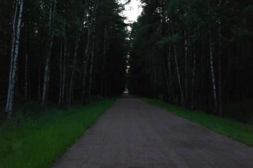 2013-06-20_22-22-04 Mescherskoe